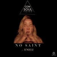 CONSOUL TRAININ - No Saint
