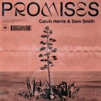 Calvin HARRIS - Promises